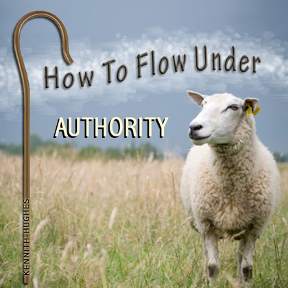 How To Flow Under Authority